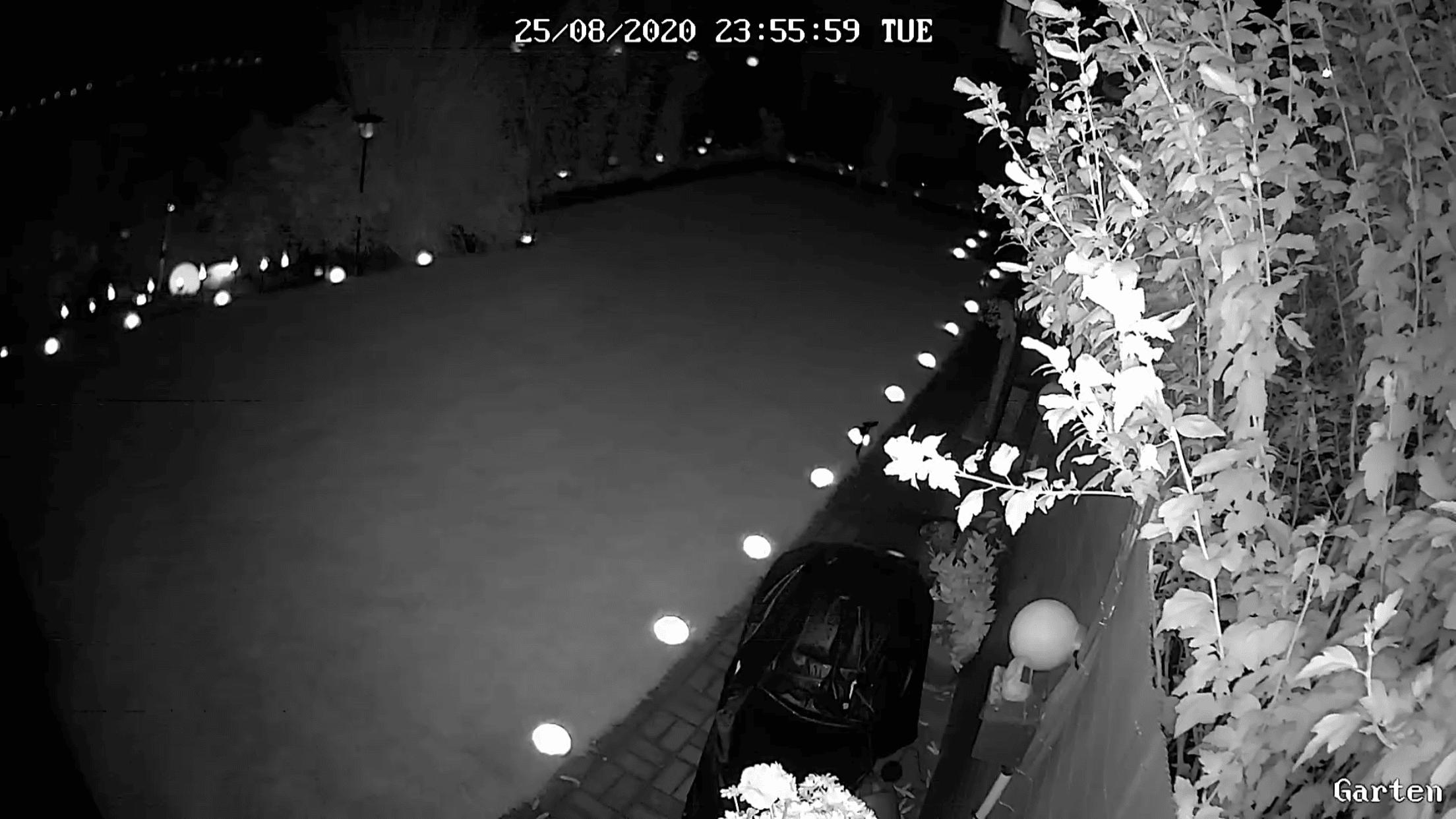 Überwachungskamera im Garten bei Nacht