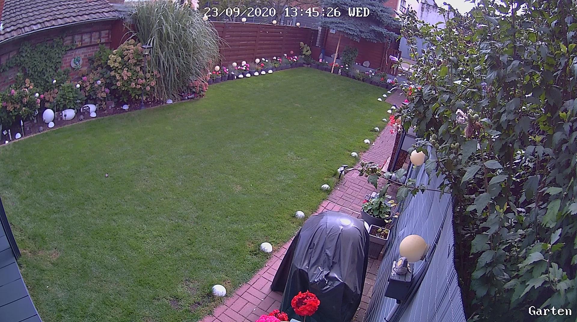Überwachungskamera im Garten